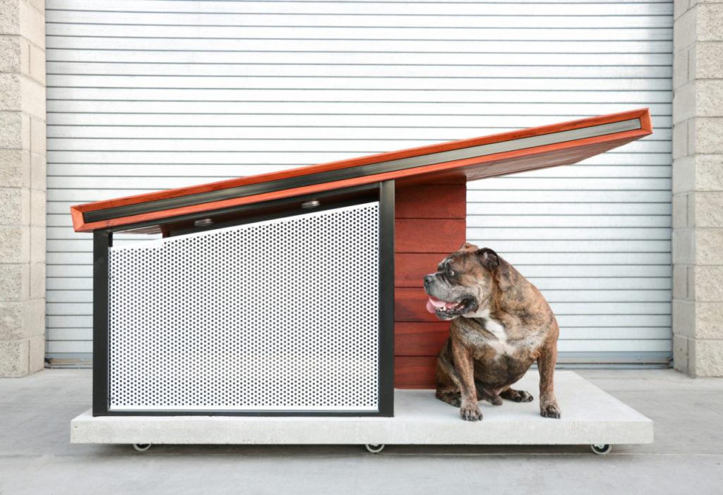 AXEL kutyaház